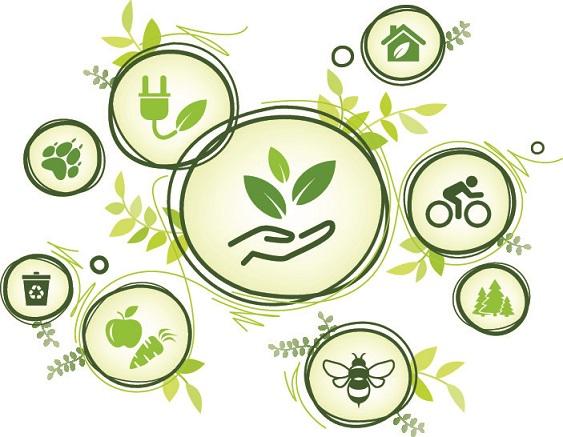 Mehr Umweltschutz für Mering – JETZT